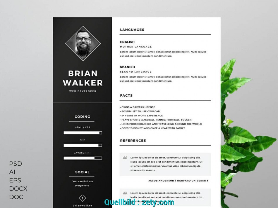 Einfach Free Resume Templates, Word: 15 CV/Resume Formats To ...