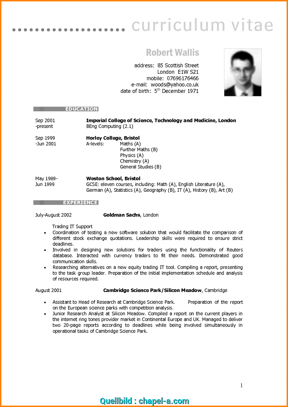 praktisch     blank cv templates  format  download with