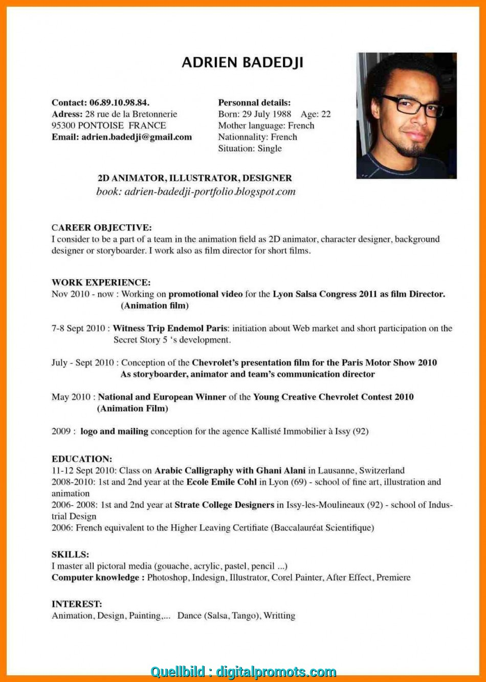 Vorhanden Example Resume English Cv Profile Examples, Students Sample Resume Free Resumes Stunning Example Of Resume In English 13 Resume English Example, Cv Example Student English