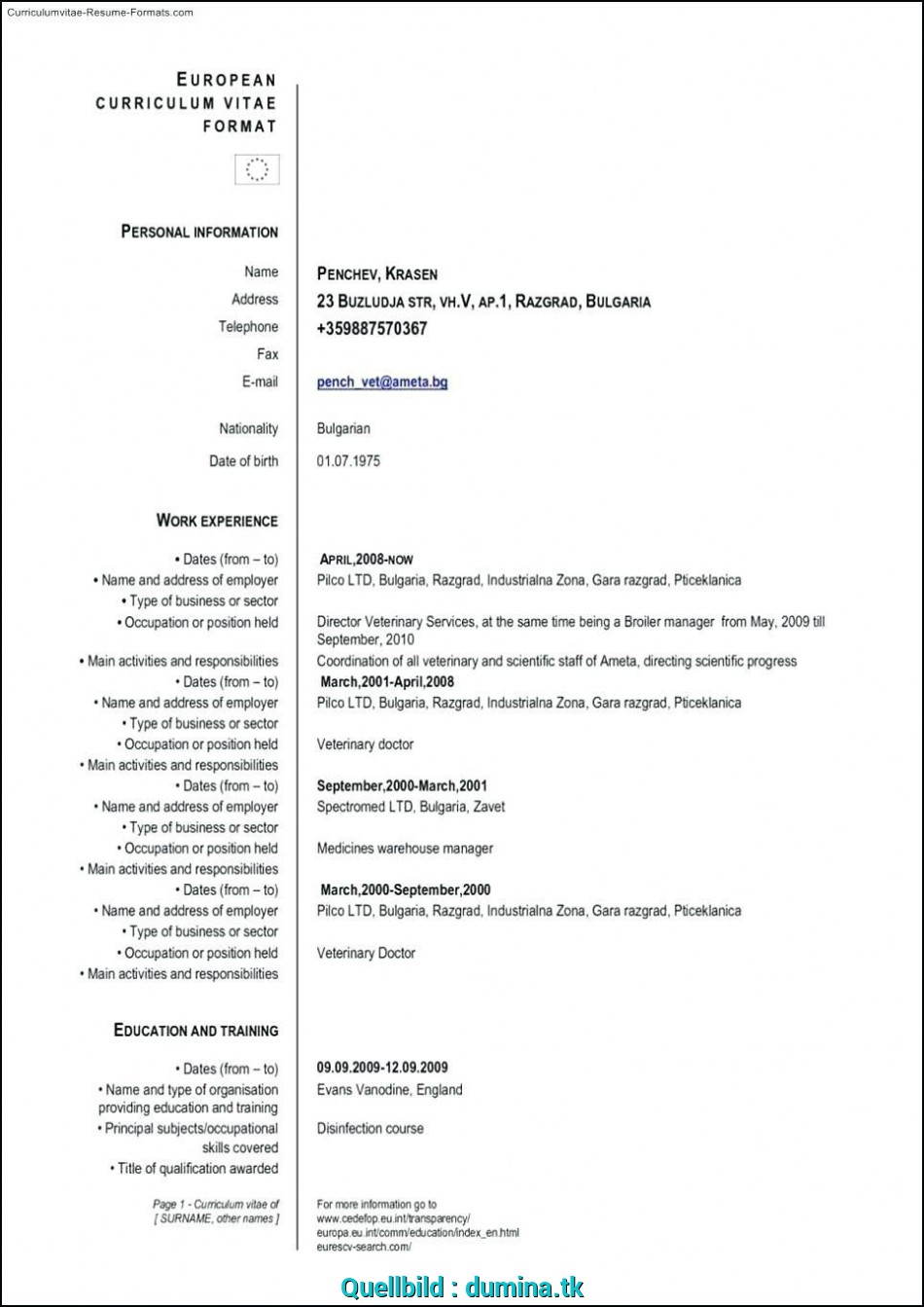 Positiv ... By Nathen Grimes From Public Domain That, Find It From Google Or Other Search Engine, It'S Posted Under Topic Europass Cv Template, Download, Europass Download Doc