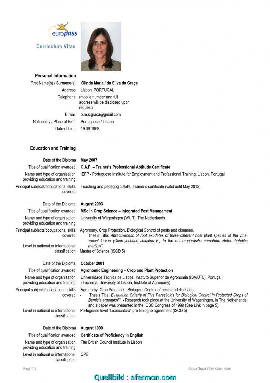 Detail Europass Resume Format, Europass English Pdf