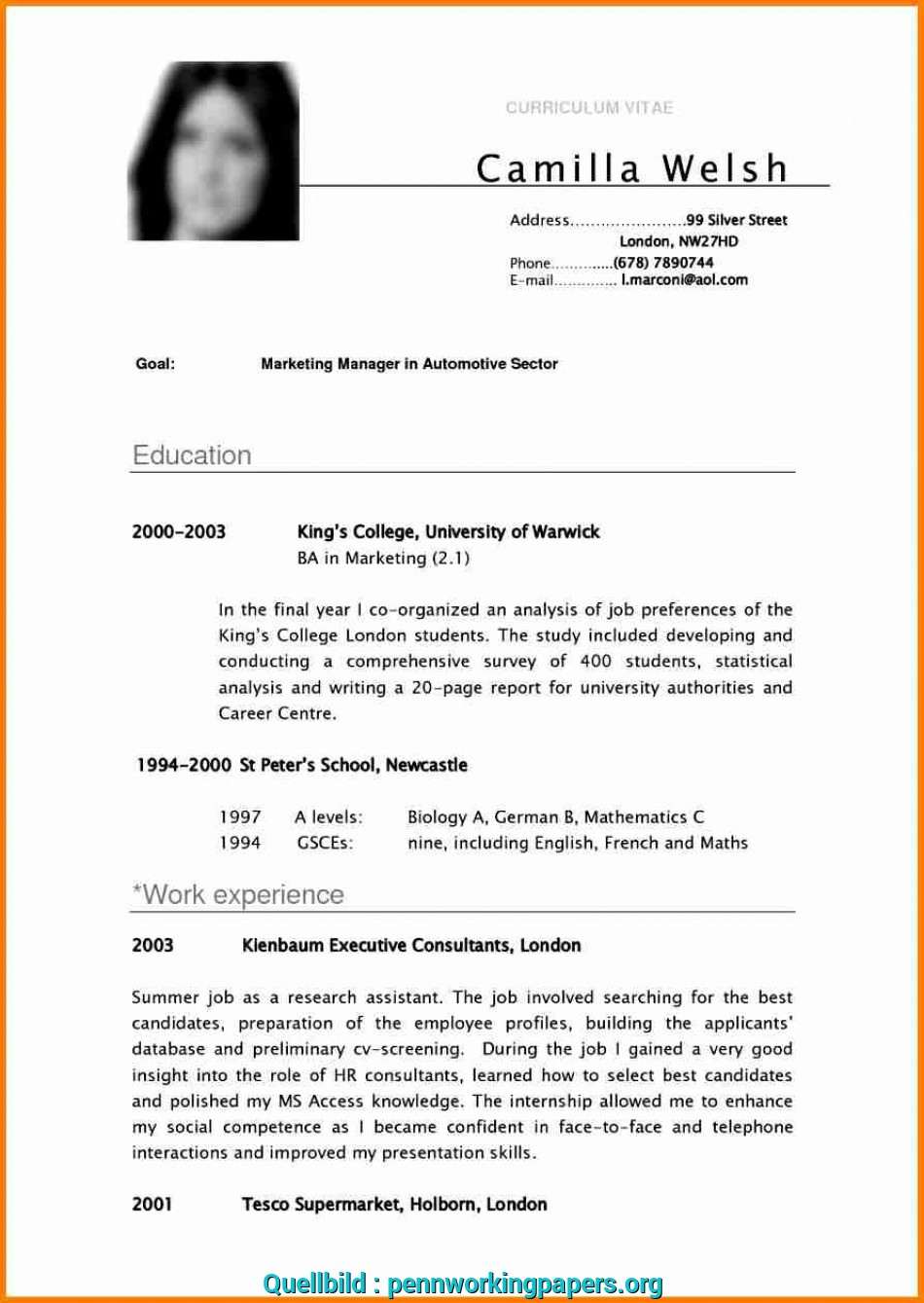 Prime English Cv ExampleExcellent Resume Example 13