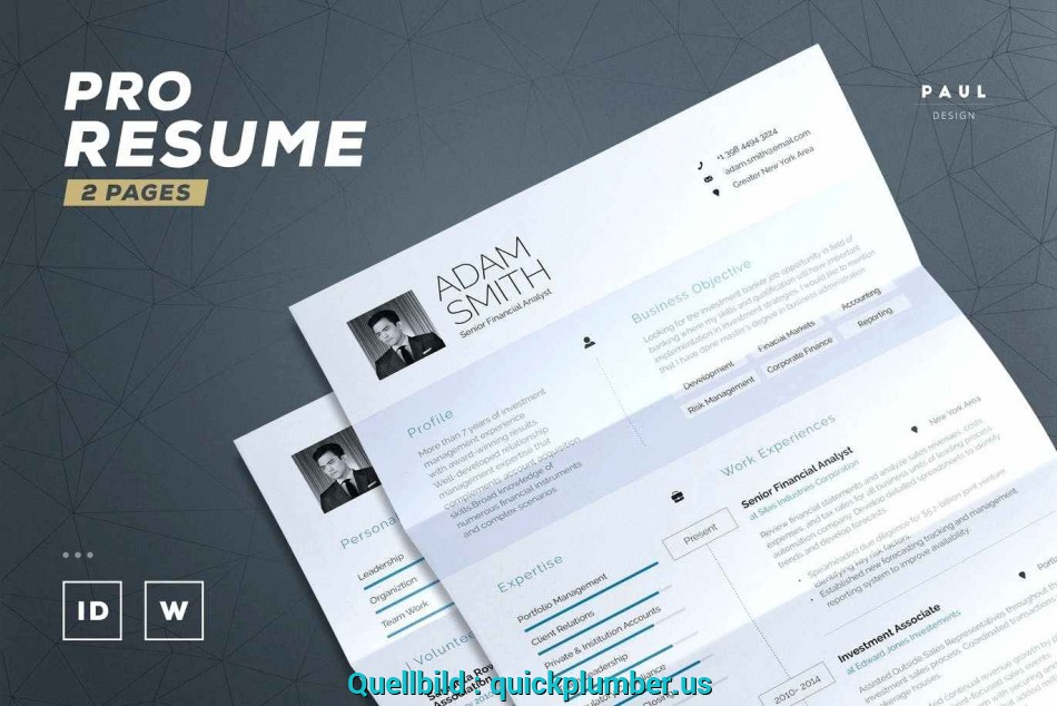 Primar Resume Templates Indesign Templte Professionl Nd Formts Hs