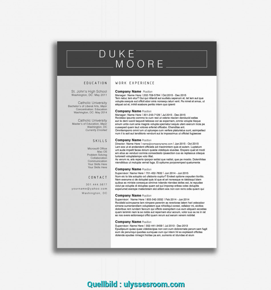 Prime 016 Resume Template Free Word Elegant Lebenslauf ...