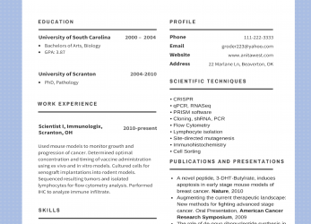 Komplett Resume Samples 2017 Unique Design Best Cv Examples 2018 To Try, American Cv 2017