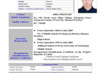 Einfach Ch0540 Baobao, Cv(English), Curriculum Vitae English Family Status