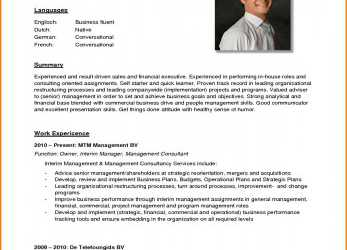 Detail 10+ German Cv Example, Steamtraaleren-Borgenes, Curriculum Vitae Sample Deutsch