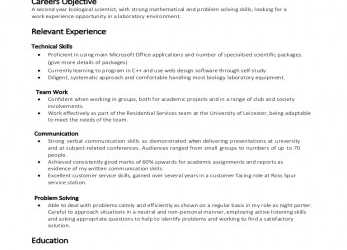 Primär Example Skill Based CV, Cv English Example Skills