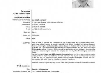 Trending CV In DOC, Cv Europass English Doc