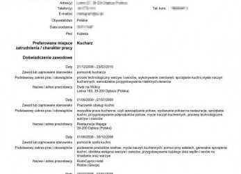 Neueste Cv In Europass Format English Deutsch Model Romana Online Example, Cv Europass Online In Romana