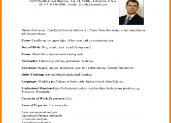 Original American Cv Format.International-CV.Png, Date Of Birth American Cv