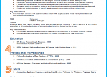 Prime Example Of A Good CV, 13 Winning, [Get Noticed], Best Cv Example In English