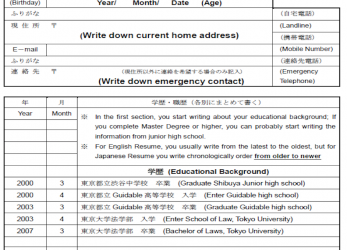 Liebling ..., As An Example, I Wrote It Down In English To Show What To Write, However,, Would Be Asked To Prepare It In Japanese When, Apply, The Job, Curriculum Vitae Japan
