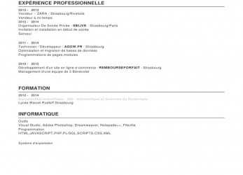 Einfach Project Leader Resume Sample Template, A Resume In Word Shift, Curriculum Vitae Zara